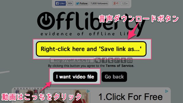 Youtubeの動画を超簡単ダウンロードできるウェブサービス offliberty 3