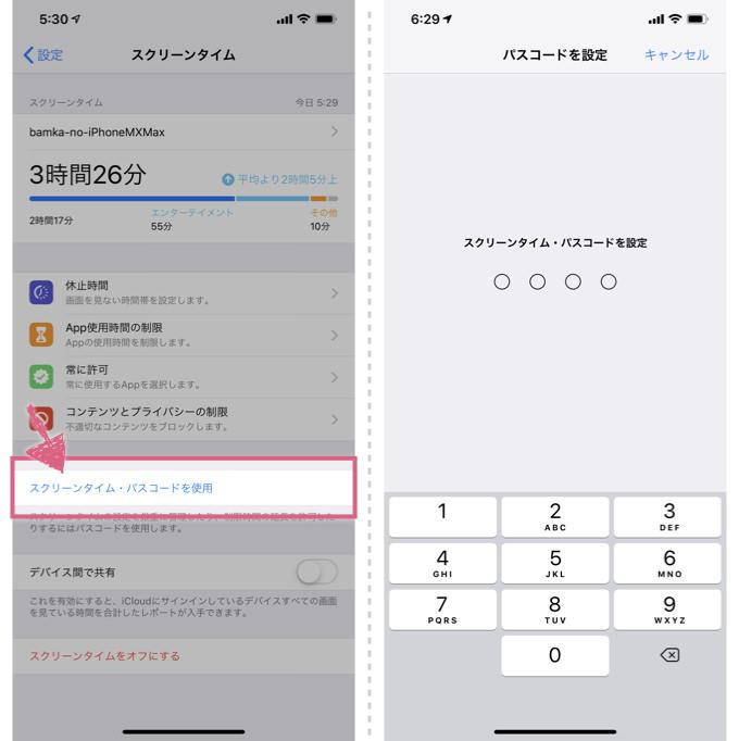 iphone-shiyo-seigen_8