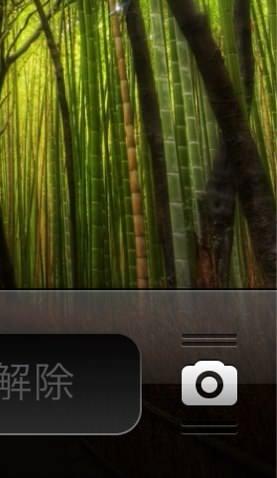 IPhoneのズーム機能 2