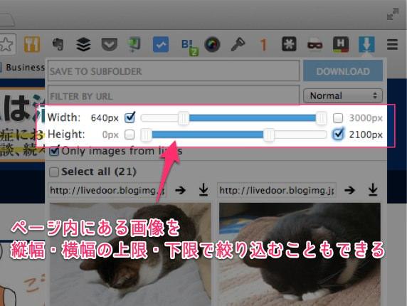 ウェブページ上にある画像を一括保存できる便利Chrome拡張 Image Downloader 07