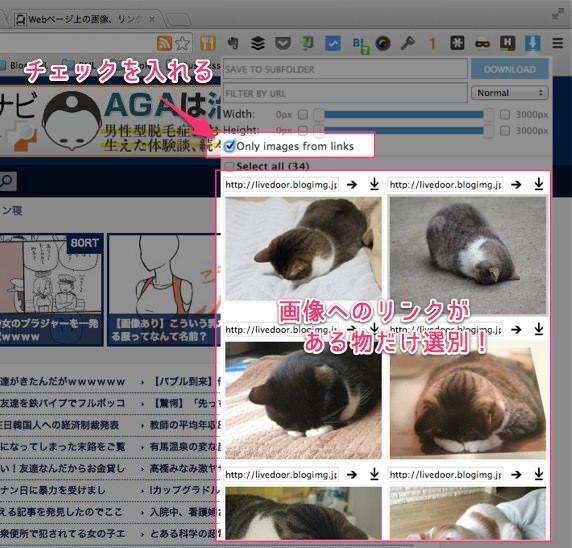 ウェブページ上にある画像を一括保存できる便利Chrome拡張 Image Downloader 05