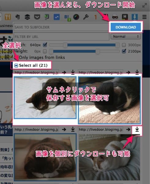 ウェブページ上にある画像を一括保存できる便利Chrome拡張 Image Downloader 06