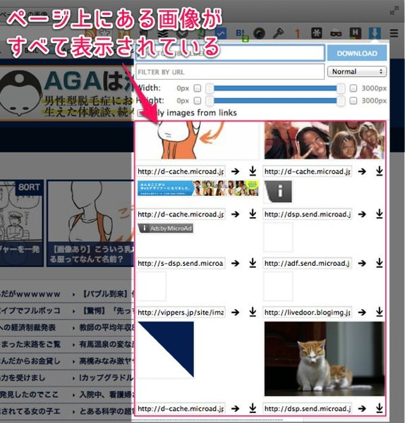 ウェブページ上にある画像を一括保存できる便利Chrome拡張 Image Downloader 04